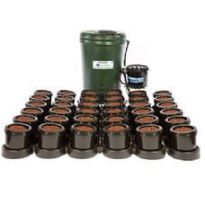 IWS Flood and Drain Basic 36 Pot System